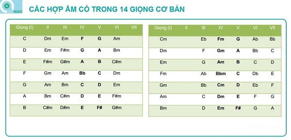 hop-am-trong-cac-giong-co-ban