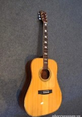 Guitar Acoustic KANSAS W-200