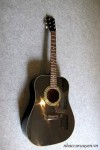 Guitar Acoustic MORRIS MD-503B