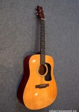 Guitar Acoustic WASHBURN D-10N