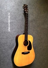 Guitar Acoustic ARIA W-15