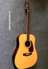 Guitar Acoustic MORRIS MD-506