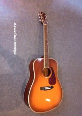 Guitar Acoustic MORRIS MD-507 TS