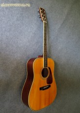 Guitar Acoustic MORRIS MD-528