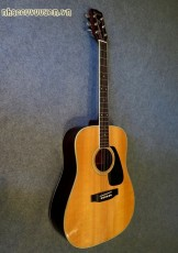 Guitar Acoustic MORRIS MV-701 Vanguard Series